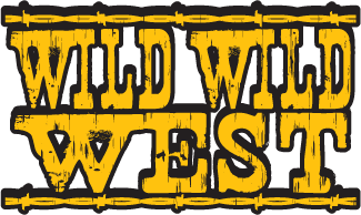 Image result for wild wild west for kids